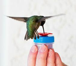 2-each Blue with Red Flower Nectar DOTS Hand Held Hummingbir