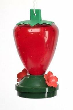 Audubon  Plastic Strawberry Hummingbird Feeder,  12 oz.  Mod