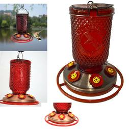 BEST Hummingbird Feeder 6 Ports Bee Guards Red Mason Jar Win