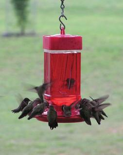 First Nature Bird Feeder Oriole RED Base Will Attract Oriole