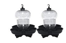2-Pack First Nature Clear Globe Style Bird Bath and Waterer