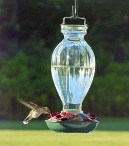 Audubon Fluted Glass Hummingbird Feeder, 20-Ounce