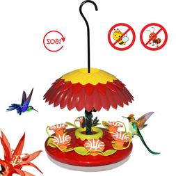 Hummingbird Feeder 16 oz with Ant Moat & 6 Feeding Ports for