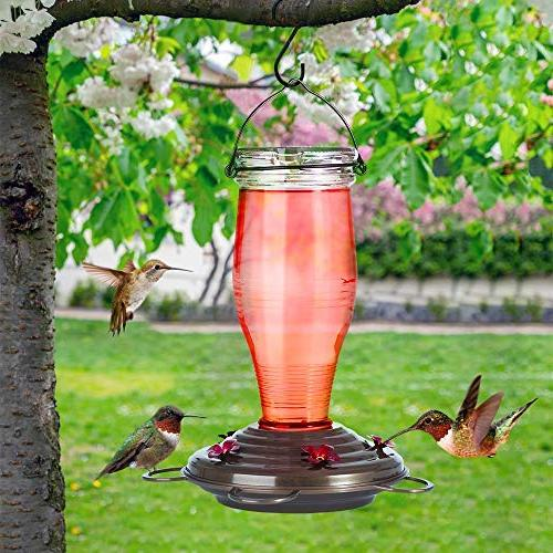 Feeders Outdoors, Bird Feeders with Feeding Capacity