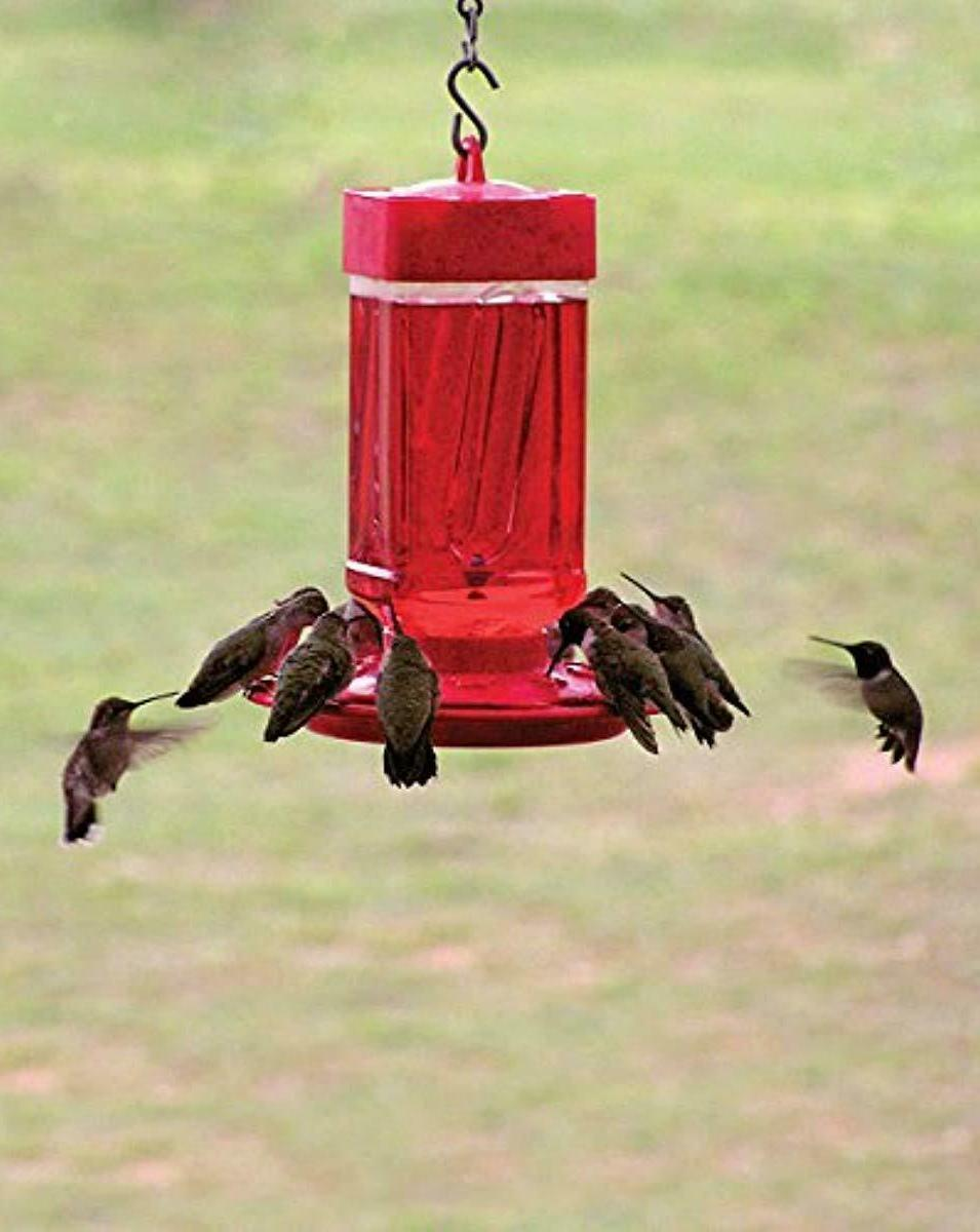 First Nature 3055 32-ounce Hummingbird Feeder Free SHIPPING