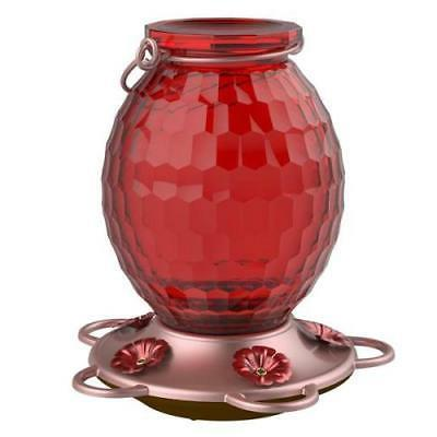 gem glass hummingbird feeder