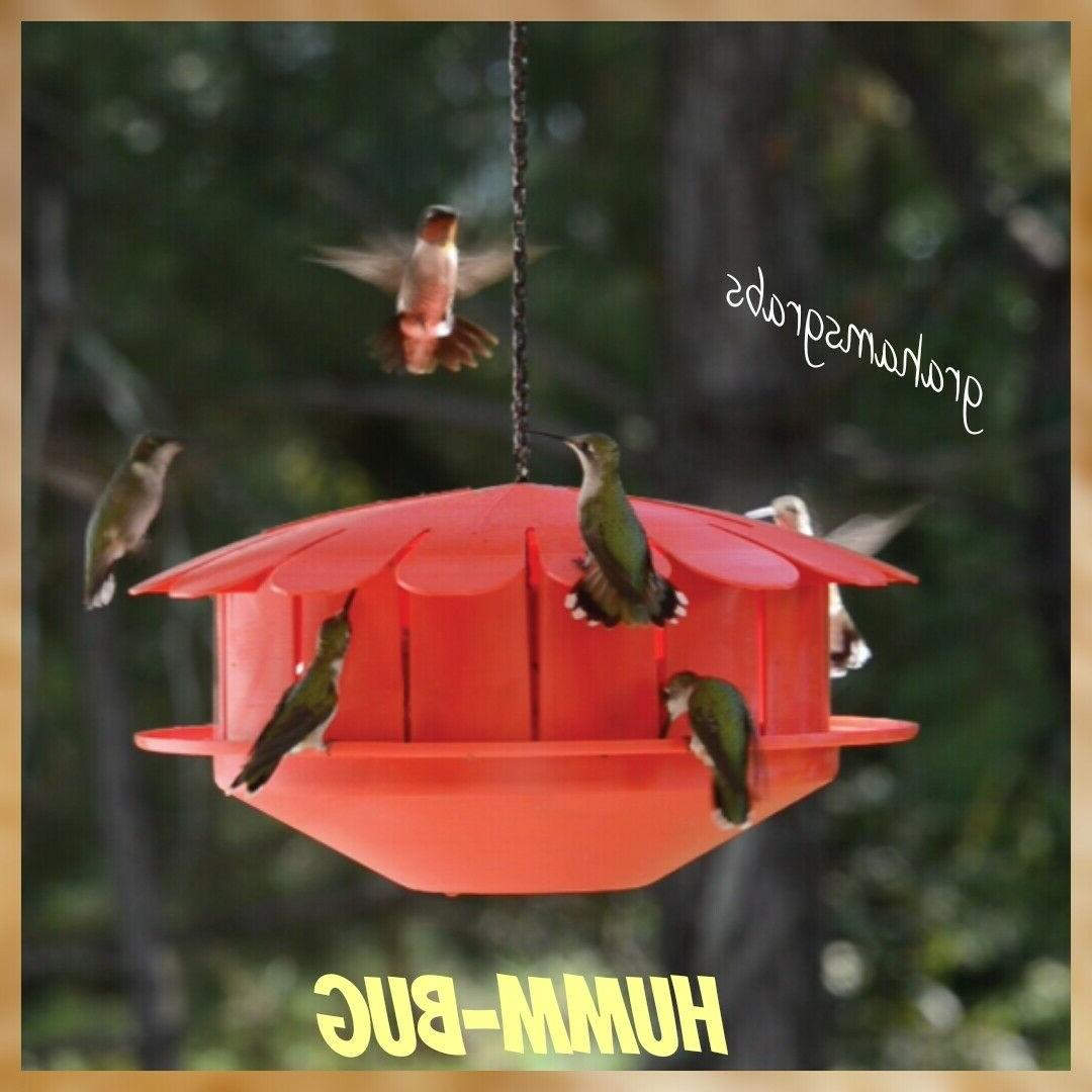 Humm-Bug NO NECTAR HUMMINGBIRD PROTEIN FEEDER, Made in the U