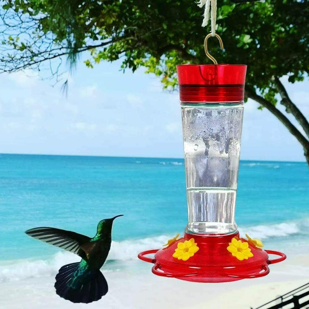 Hummingbird Feeder, Glass Feeders, 10oz Nectar