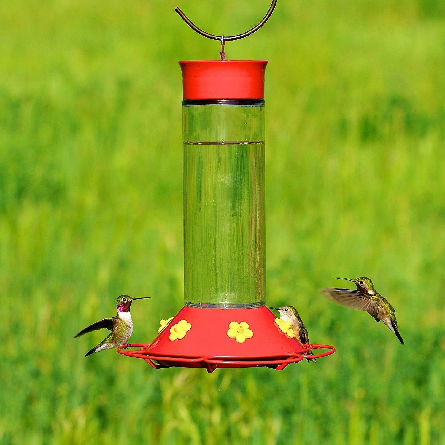 humming feeder glass for outdoor nectar red