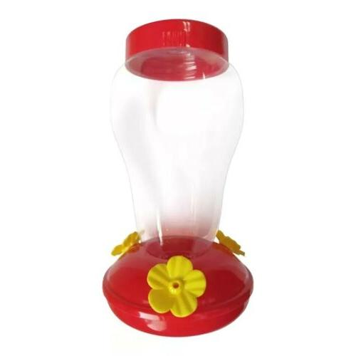 Hummingbird Nectar Yard Window Bird Red Clear