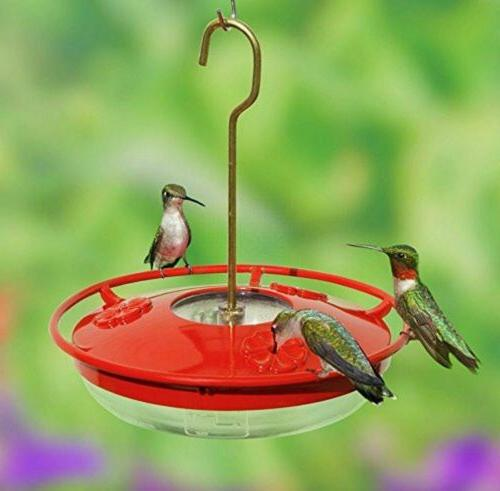 Hummingbird Feeder with in Moat, 1 Nectar