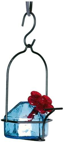 Parasol LP1AQ1 3 by 6-Inch Lunch Pail 1 Hummingbird Feeder A