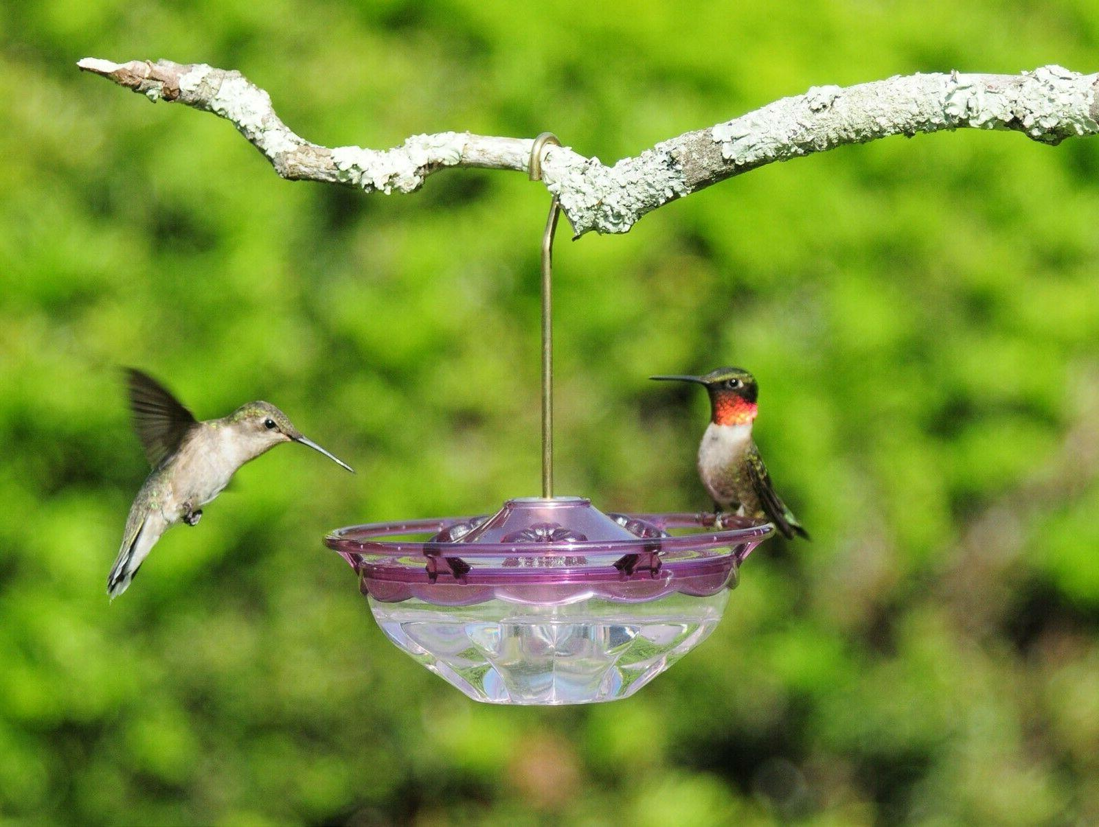 Hummingbird Feeder Nwt First Nature 16oz Plastic Nectar Feeders Home & Garden