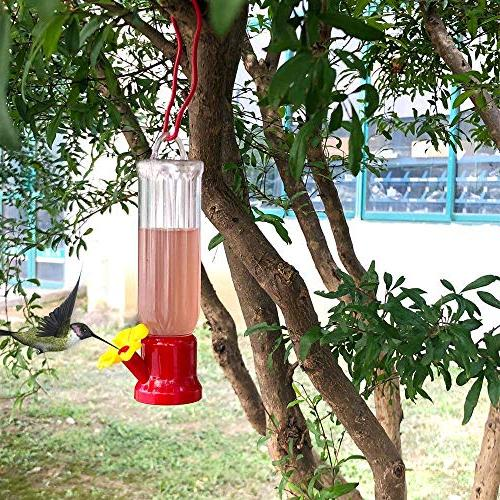 EJWOX Humming feeders, Set Including Hanging