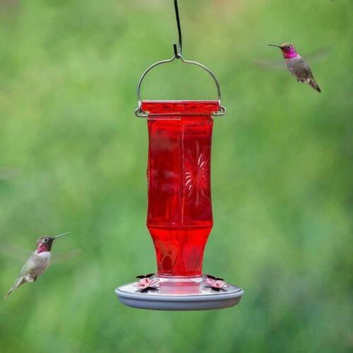 Perky-Pet Ruby Starburst Glass Hummingbird 8139-2