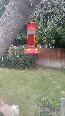 More Birds Ruby Feeder, 5 Ports