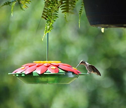 Wild Wings WW3DHF3 Real Flower Feeder, Red