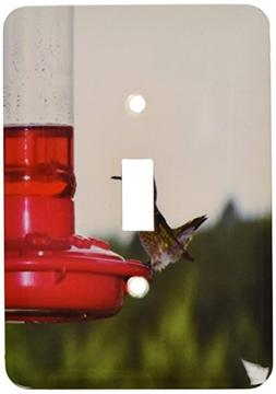 3dRose lsp_14198_1 Hummingbird On Feeder 2 Single Toggle Swi