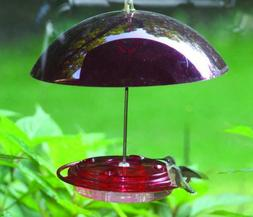 Birds Choice NP3008 8 oz. Hummingbird Feeder with Dome