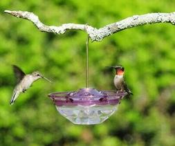 Aspects PLUM HummBlossom 4 oz Hummingbird Feeder 3 Ports USA