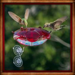 RUBY SIPPER WINDOW HUMMINGBIRD FEEDER