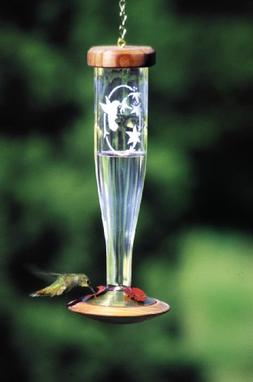 Schrodt Crystal Etched Lantern Hummingbird Bird Feeder