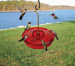 Songbird Essentials Haven Hummingbird Feeder